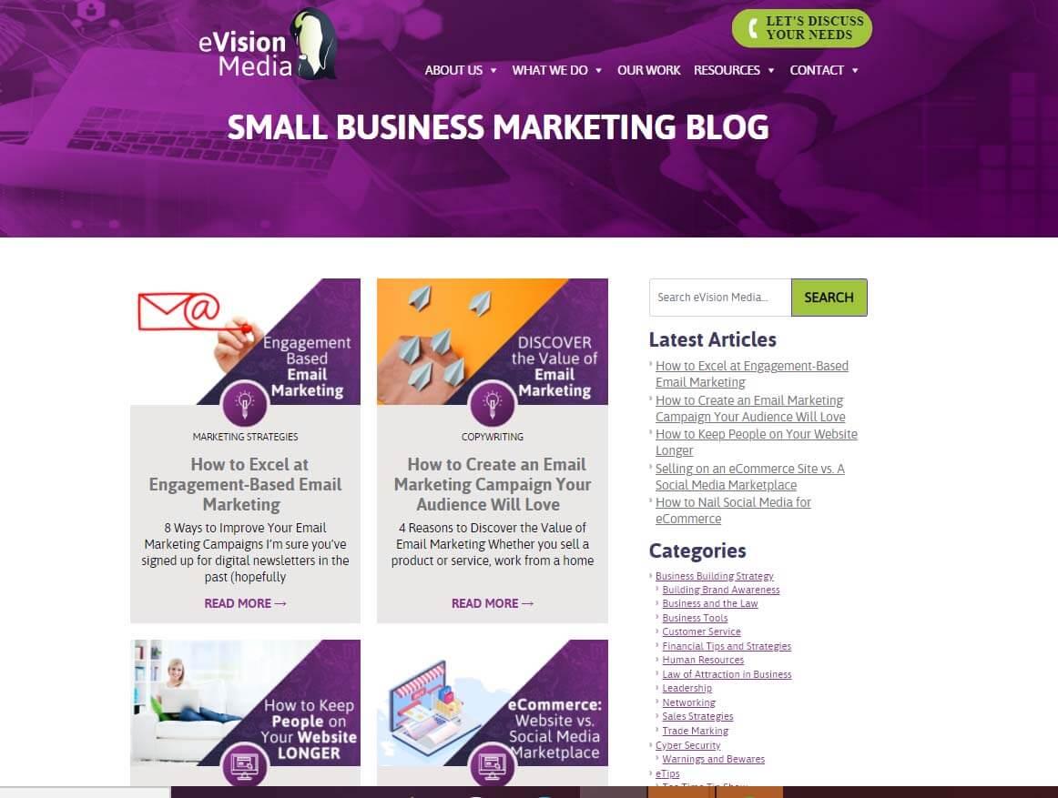 blog evision
