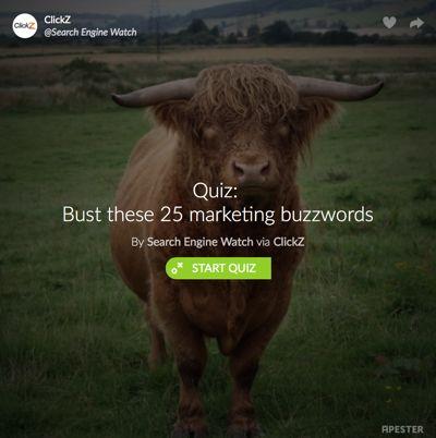 Blogging_ClickZ_SEW_Marketing Buzzwords Quiz_400