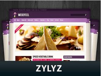 zylyz-wordpress-tema